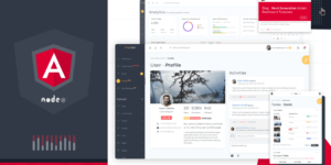 Angular Admin Dashboard Template with Node.JS Backend 1