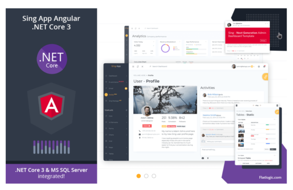 Angular Admin Template with .NET Core 3 Backend 2